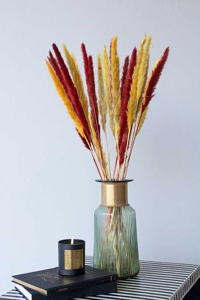 dried pampas